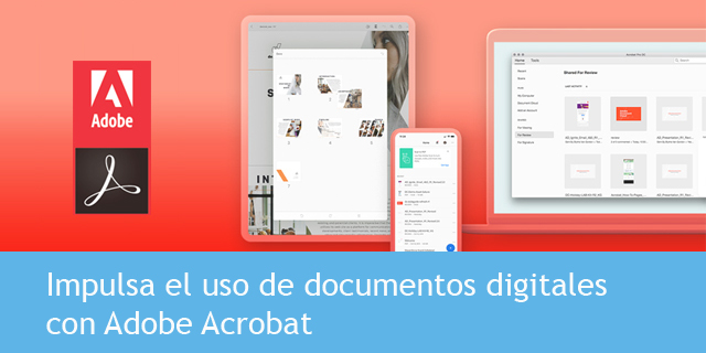 Licencias Adobe Acrobat